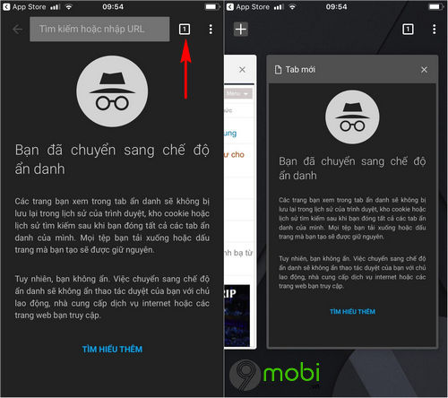 cach vao web an danh cac trinh duyet tren iphone 5