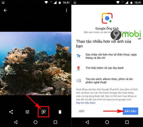 cach su dung google lens trong google photos 5