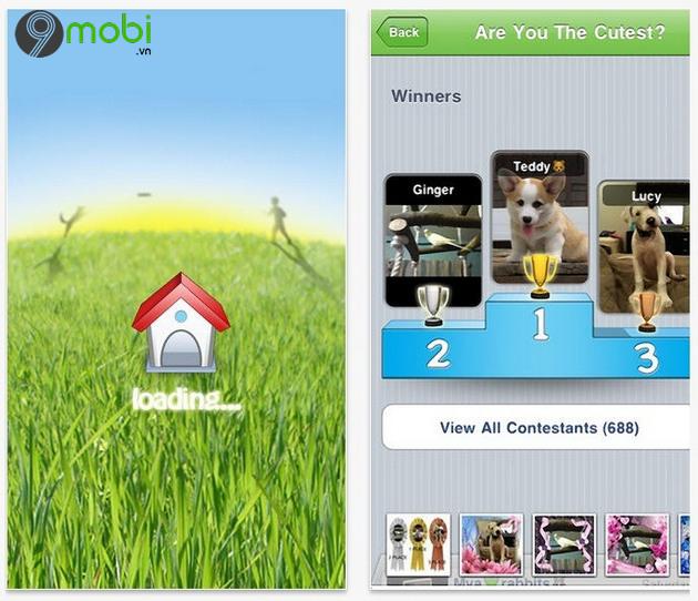 app hay gianh cho nguoi yeu thu cung