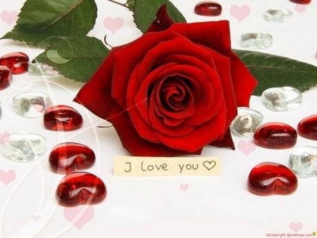 hinh nen tinh yeu i love you