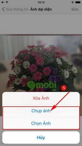 huong dan thay anh dai dien whatsapp