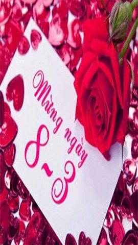 Hình nền hoa hồng 8-3